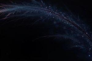 digital art black background feathers dark