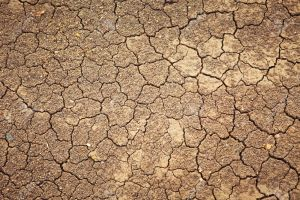dry  template dirt texture