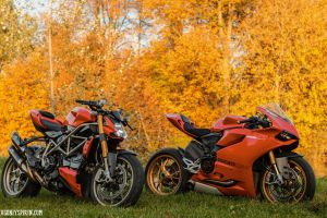 fall ducati 500px leaves orange motorcycle