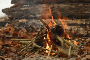 fall fire campfire nature