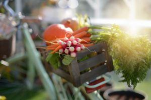 food vegetables vehicle bicycle