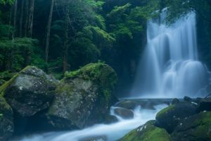forest water waterfall long exposure nature rock