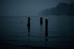 gloomy dark winter mist snowing lake