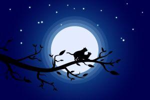 graphic design stars moon cats illustration