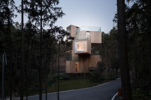 house trees modern architecture forest wood house