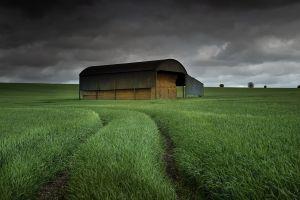 landscape dark field clouds plants