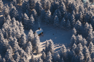 landscape forest winter cinema4d
