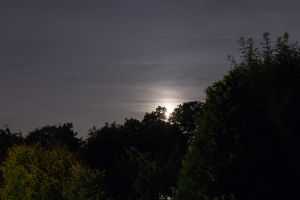 landscape moon night landscape