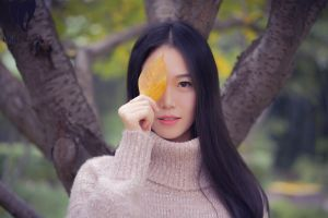 leaves long hair looking at viewer women outdoors asian sweater trees fall women