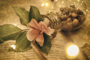 macro light bulb moody closeup grunge flowers decoration still life books