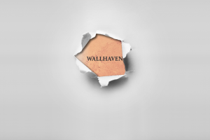 minimalism wallhaven paper simple background
