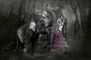 model women elephant animals