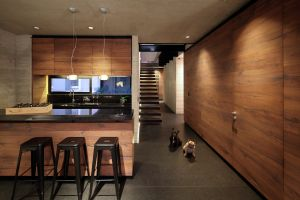 modern kitchen pet interior house bulldog room dog