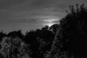 moon monochrome landscape night landscape