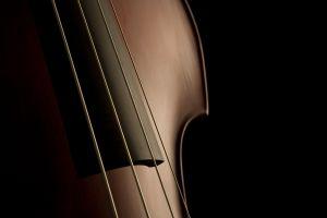 music musical instrument violin
