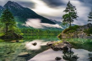 nature trees water mountains