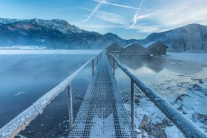 nature winter lake germany