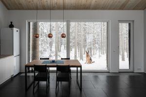 pet interior snow room dog modern house