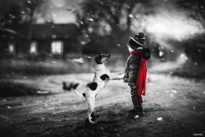 photo manipulation dog children