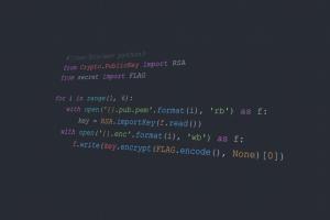 python (programming) code minimalism simple background text