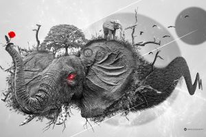 rose crow trees photoshop desktopography elephant nature space digital