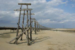 sand landscape russia sky wood