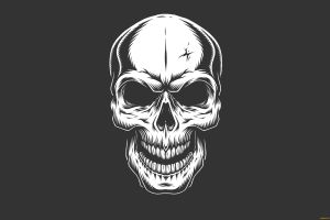 skull minimalism simple background