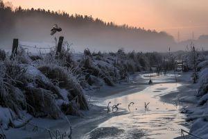 snow cold winter ice landscape