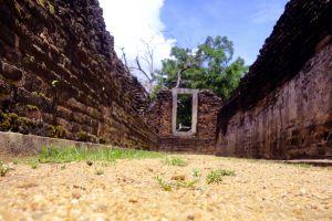 sri lanka landscape wall