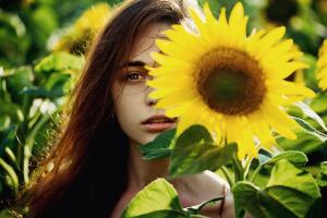 sunflowers women flowers yellow flowers women outdoors