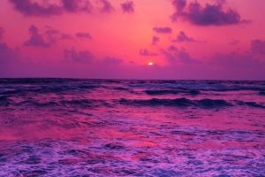 sunset purple clouds sky horizon sea waves pink sun water