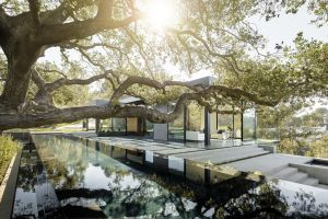 swimming pool house modern trees architecture