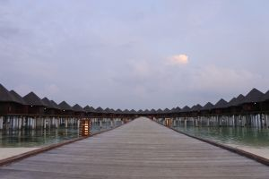 symmetry pier holiday