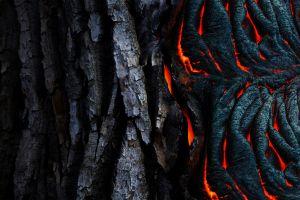 texture abstract tree bark lava black