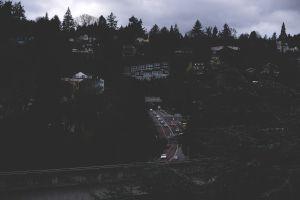 town forest dark road