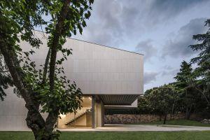trees house modern