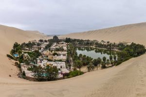 trees palm trees building landscape sand peru water swimming pool village nature lake south america oasis desert