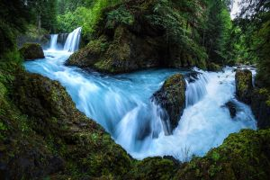 waterfall nature water forest