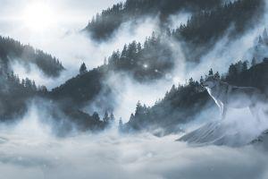 wolf snow mammals nature mountains landscape