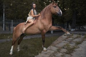 women women outdoors barefoot dmitry shulgin women with horse animals horse
