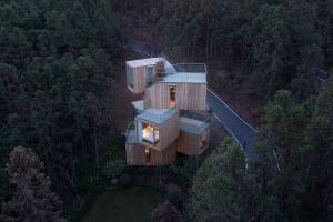 wood house modern architecture house trees forest