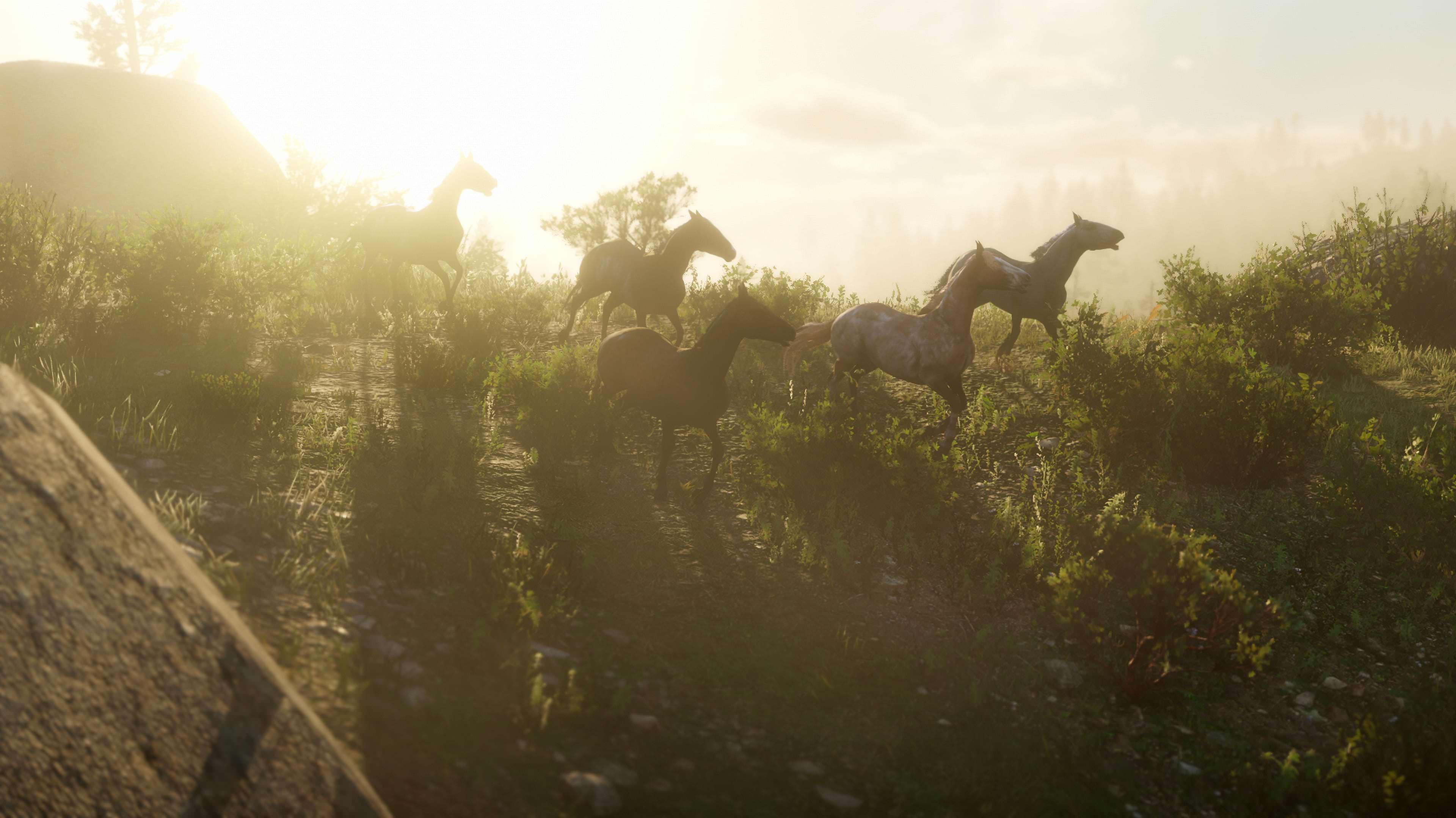 Video Games Red Dead Redemption 2 Rockstar Games Red Dead ...