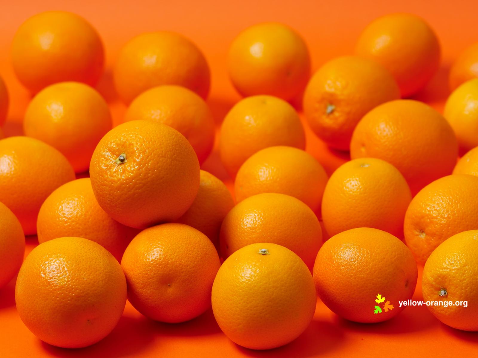 fruit food orange (fruit) orange