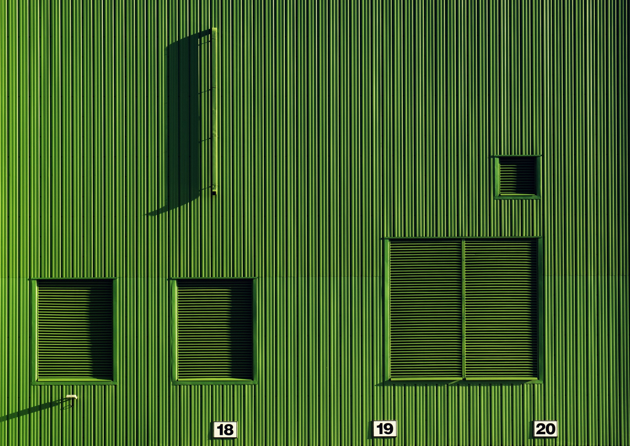 green numbers photography