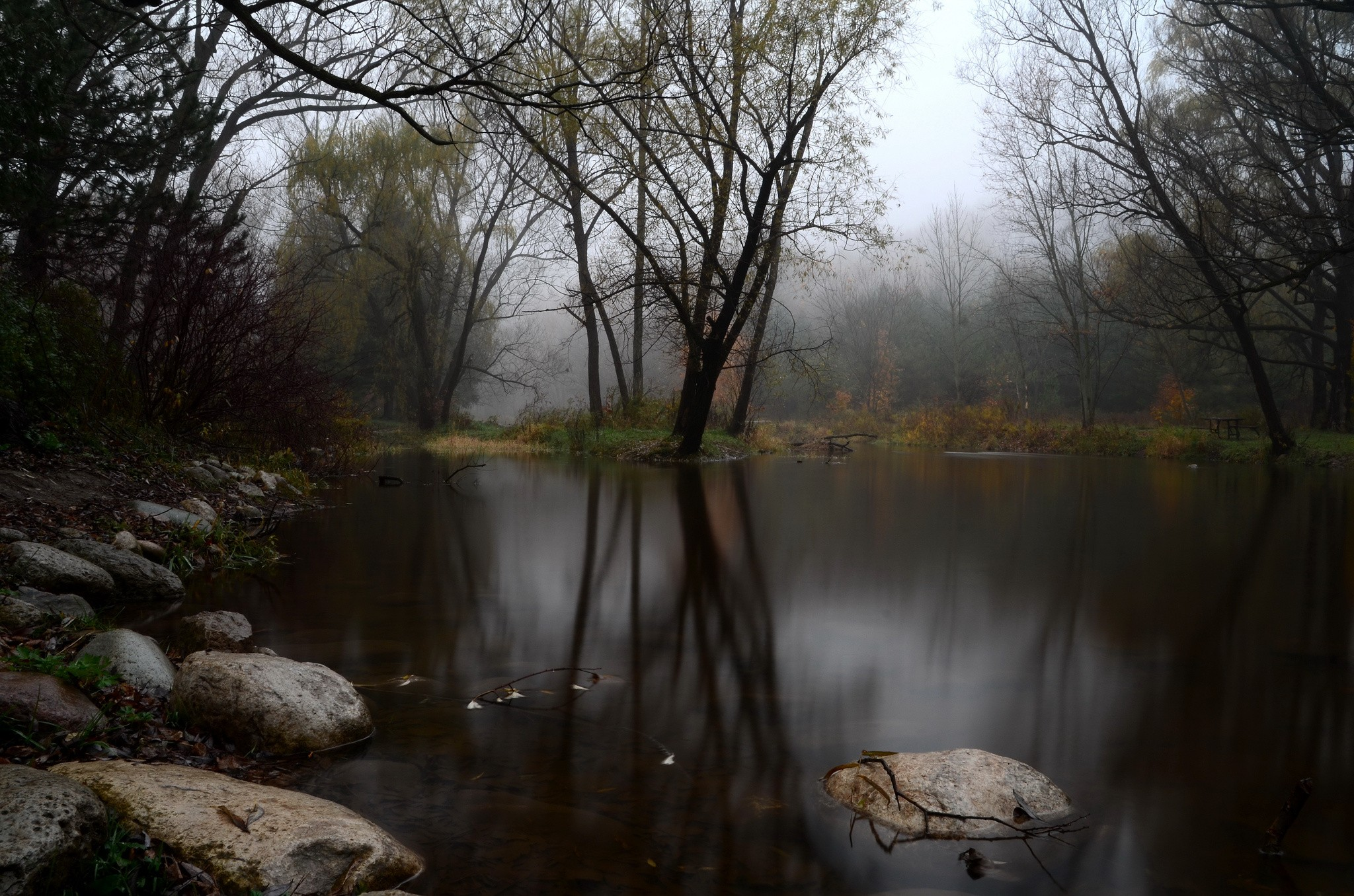 nature landscape trees lake pond