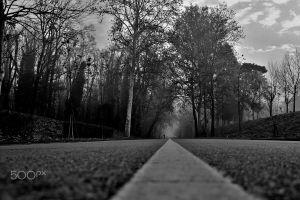500px monochrome asphalt outdoors road