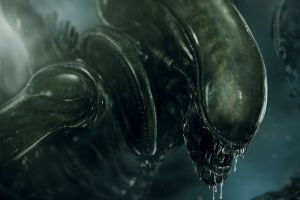 aliens xenomorph artwork creature
