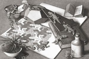 animals bottles books reptiles optical illusion artwork drawing monochrome m. c. escher psychedelic