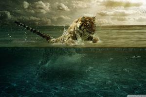 animals digital art underwater fantasy art tiger