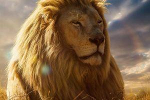 animals happy lion